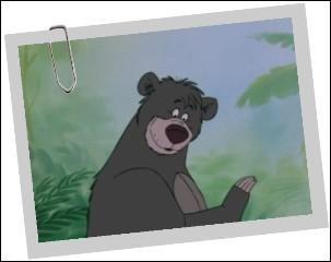 """Le credo de Baloo gris est """"il en faut peu pour être heureux"""" et """"il faut se satisfaire du nécessaire"""". On le voit déambuler dans :"""