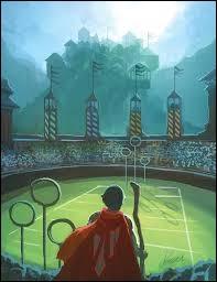"""Dans la saga """"Harry Potter"""", de combien de personnes se compose une équipe de Quidditch ?"""