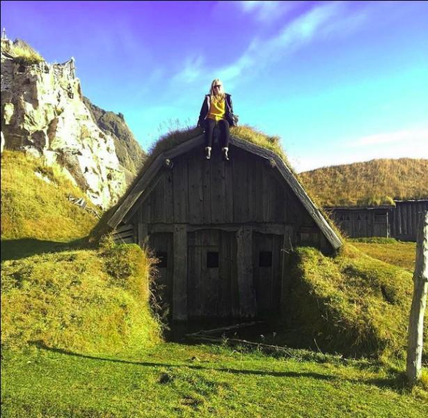 Puisque nous avons évoqué la fantastique artiste qu'est Björk, la voici... Juchée sur sa toute dernière maison (construite par elle-même et son compagnon !). Alors ?