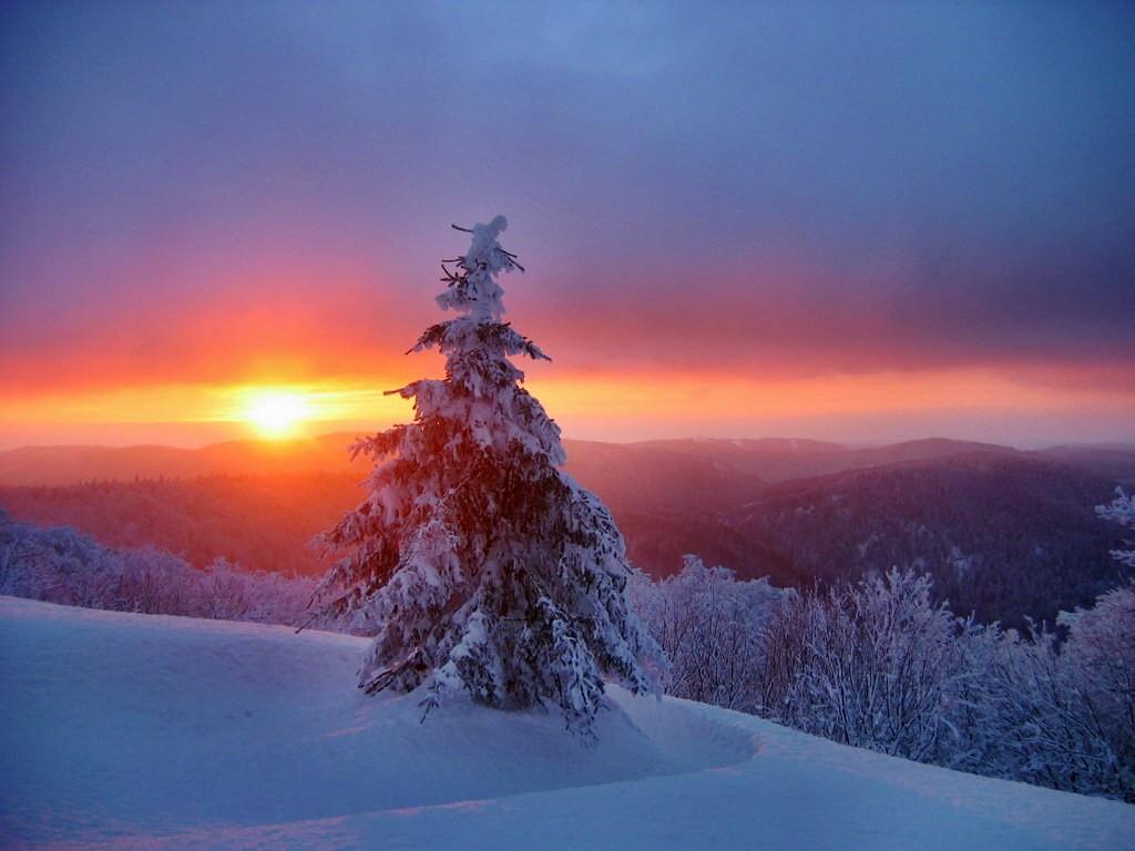 Au cœur de l'hiver