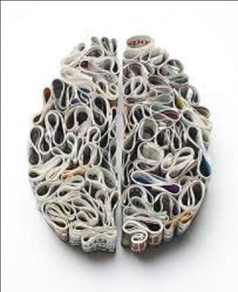 J'ai oublié le plus important, le cerveau. La cervelle de canut est une spécialité de quelle ville ?