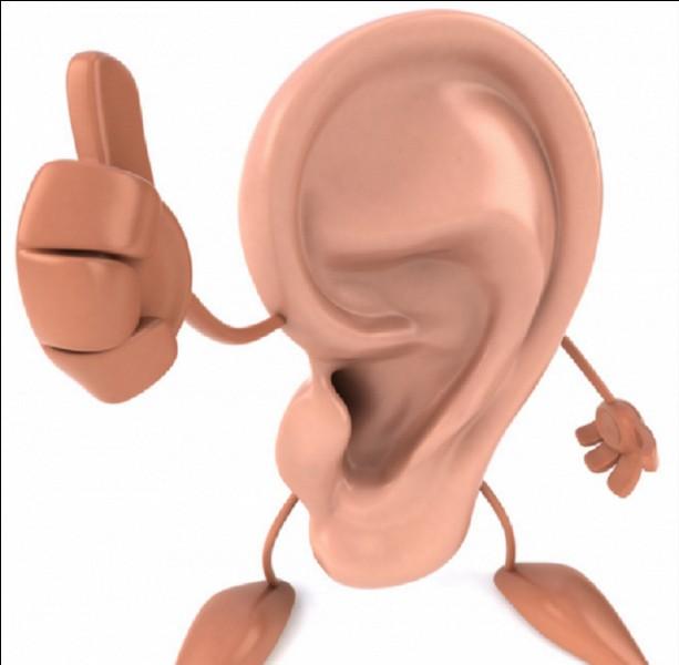 Qu'est-ce qu'une oreille de Judas ?