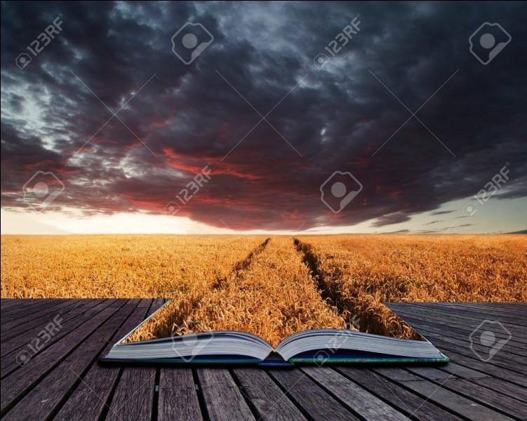 """Le roman """"Les Buddenbrook"""" est signé..."""