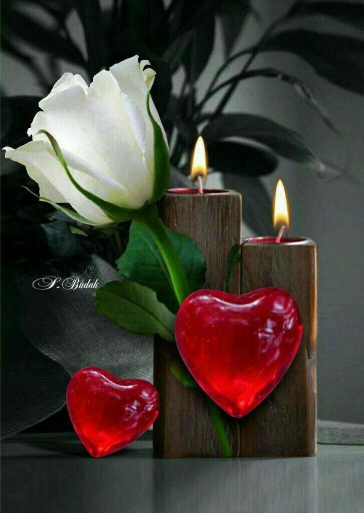 Les couples célèbres fêtent la Saint-Valentin !