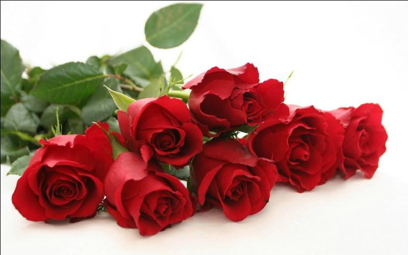 Quelles fleurs sont l'emblème de la passion ?