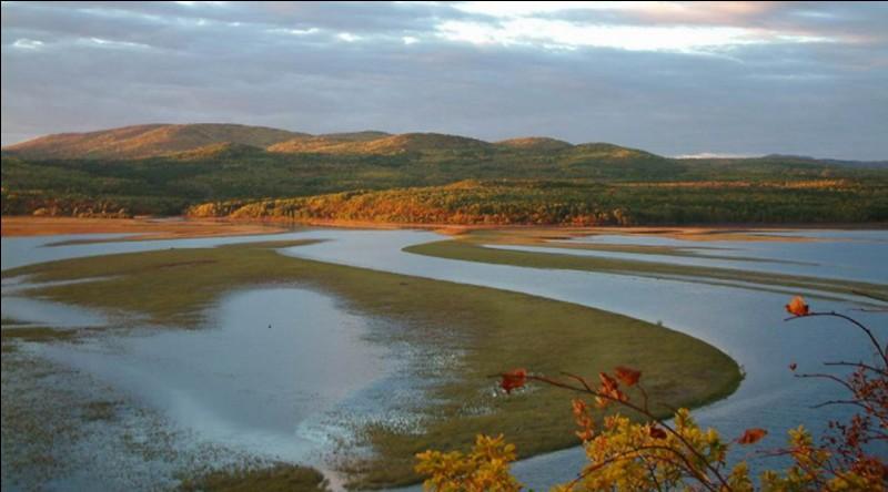 Quel pays n'est pas traversé par le fleuve Amour ?