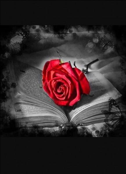 Les amants célèbres de la littérature