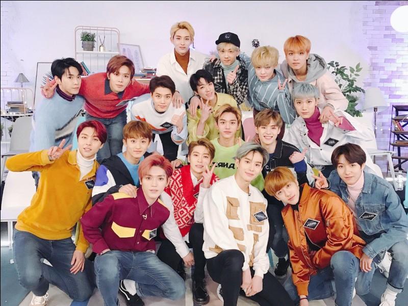 Combien y a-t-il de membres dans le groupe NCT (global) ?