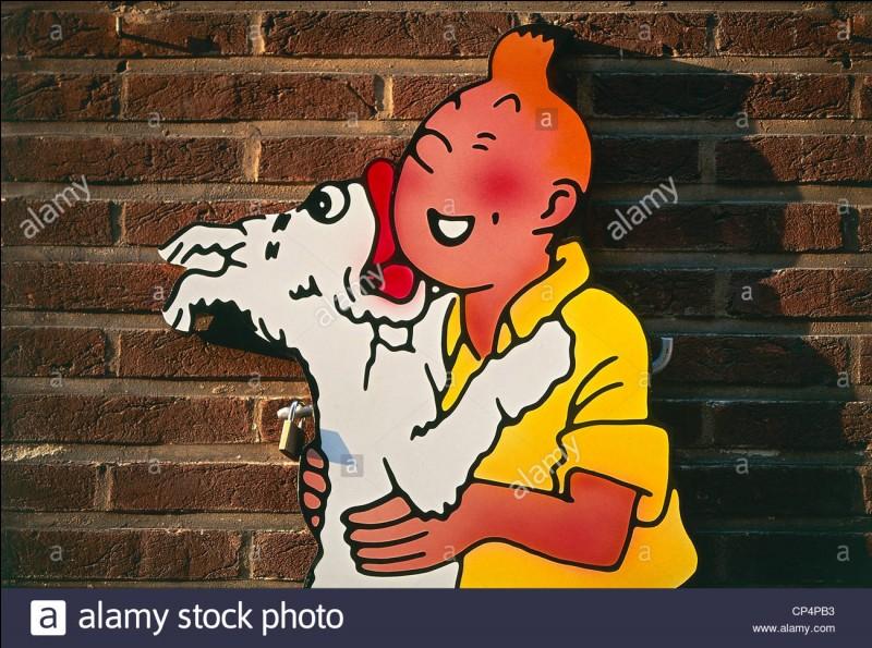 500 € : Comment s'appelle le chien de Tintin ?