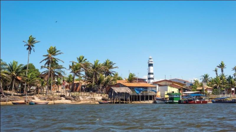 Le Nord du Brésil est soumis à un climat tropical : voyez cette incroyable vitalité grâce à plusieurs étangs au milieu des dunes de sables. Des étangs qui se remplissent grâce à l'eau de pluie et où se développent poissons et tortues : dès mai, on peut y trouver cette alternance exceptionnelle de dunes et de bassins d'eau.Quel nom donne-t-on à ces lagunes interdunaires situées au Brésil ?