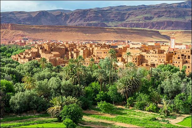 Depuis ''Mille et une Nuits'' cet endroit est le carrefour ethnique et culturel du Grand Sud Marocain. On trouve cette magnifique halte à cette oasis de palmeraies bordée par les montagnes arides de l'Atlas. Remarquez ces maisons en terre séchée dont il faut s'inspirer du modèle en les rénovant.Quel est ce lieu le plus haut en altitude consacré à la culture du palmier dattier ?