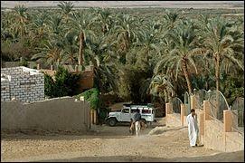 On y trouve les ruines d'un temple construit par Alexandre le Grand, au nord-est de l'oasis : ce conquérant est passé à cette oasis à son retour de l'oracle d'Ammon-Zeus à Siwa. C'est l'oasis la plus proche du Caire. Les fouilles ont mené à des découvertes remontant aux périodes égyptiennes, helléniques, romaines puis berbères.Quelle est cette oasis qui est habitée depuis le paléolithique ?
