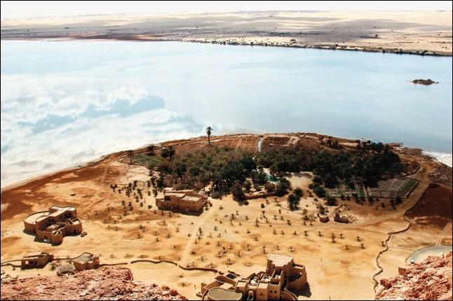 Bordée par le plateau du désert libyque, elle est occupée depuis l'Antiquité. Égyptienne aussi, elle porte le nom d'« oasis d'Amon » : ses jardins s'abreuvent sur des nappes souterraines, de sources artésiennes. Nommez l'oasis où Alexandre le Grand reçut de l'oracle confirmation qu'il était un descendant direct du dieu Amon et de ce fait, pharaon.