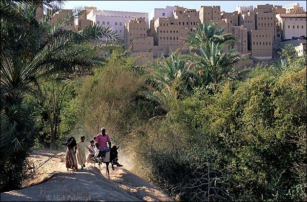 Cette oasis est entourée sur 3 côtés d'une palmeraie. Ensuite il y a un mur d'enceinte et 500 maisons serrées les unes sur les autres comme une forteresse : d'après l'Unesco, qui travaille sur le site, une cinquantaine sont dans un état critique et une loi de 1533 oblige à reconstruire comme avant.Quel est ce ''Manhattan du désert'' où l'on voit ces maisons-tours du XVIe siècle en brique crue ?