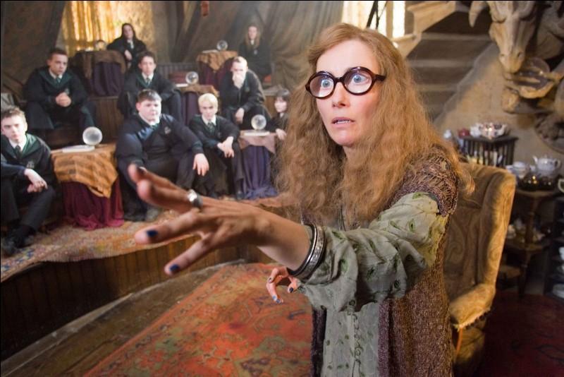 Pour quel objectif Sibylle Trelawney se rend-elle dans cette salle ?