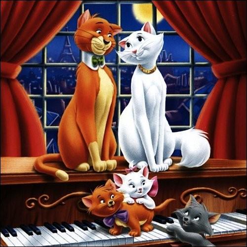 Amour et bonheur pour ces deux chats ! De qui s'agit-il ?