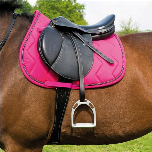 Comment appelle-t-on la partie pour mettre les pieds de la personne qui monte à cheval ?