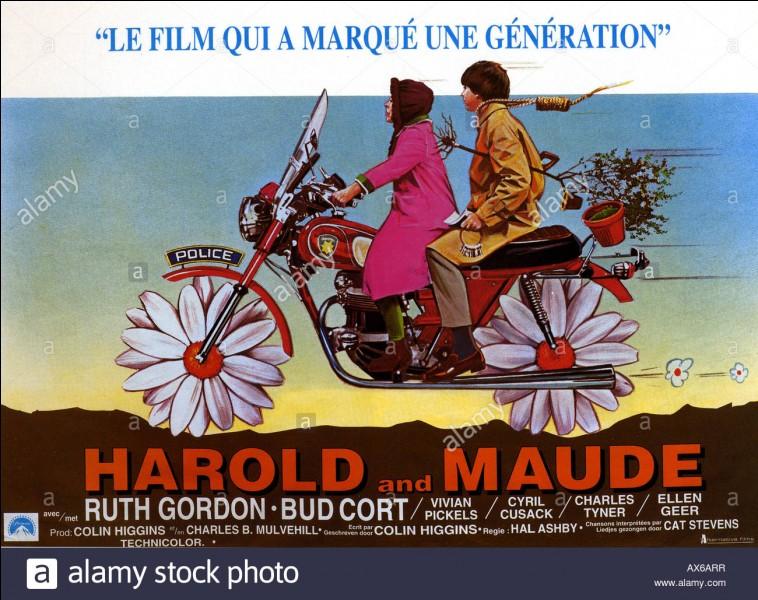 """Film d'amour original.Le film """"Harold et Maud"""" raconte l'étrange relation entre un jeune homme et une femme plus âgée."""