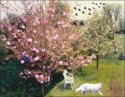 Dans notre jardin se dresse un cerisier. Il n'a pas encore de [bour...ons] mais nous [ima...inons] déjà ses [...olies] fleurs.