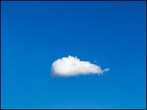Il fait très beau. Dans le ciel bleu, je ne vois qu'un [nua...] blanc.