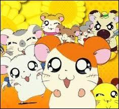Quel est le nom de ce dessin animé mettant en scène des hamsters ?