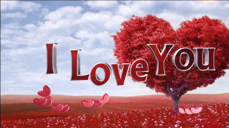"""La chanson """"I will always love you"""" est interprétée par..."""