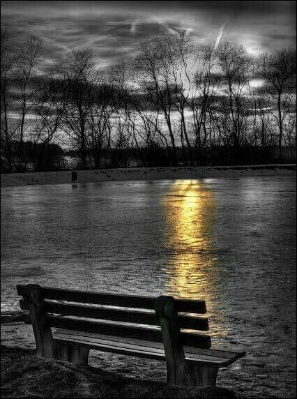 Complétez encore : Sur notre banc ami, tout verdâtre de mousse,Sur le banc d'autrefois nous reviendrons causer,Nous aurons une joie attendrie et très douce,La phrase finissant toujours....