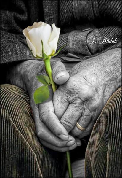 On n'ira pas jusqu'au bout du poème, mais complétez encore : Et comme chaque jour je t'aime davantage,Aujourd'hui plus qu'hier et bien moins que demain,Qu'importeront alors les rides.....?