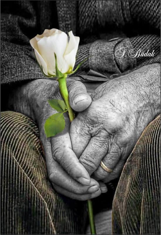 St-Valentin : La médaille d'amour