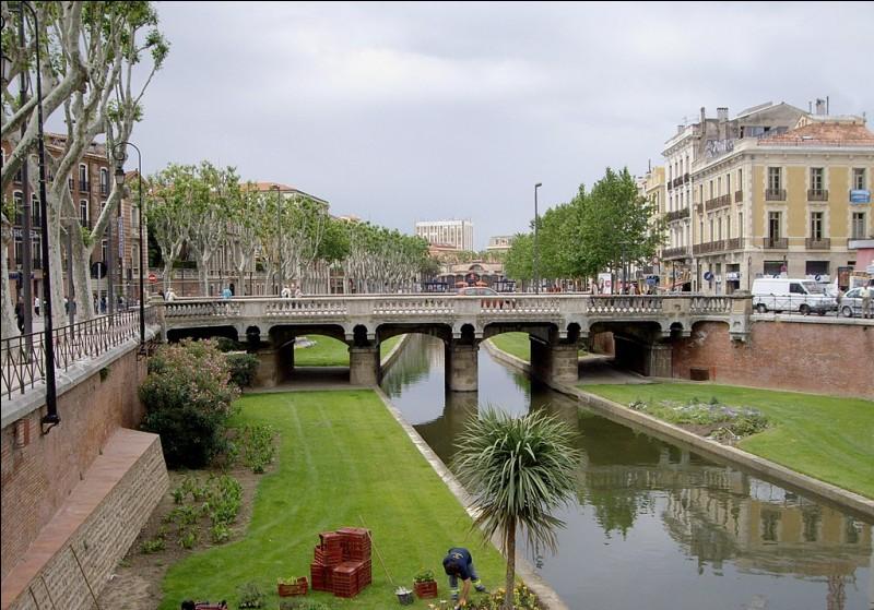 Quel est le nom de la rivière qui traverse le Pont Magenta à Perpignan ?