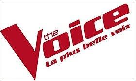 """Julien Clerc fait partie du jury de la 8e saison de """"The Voice""""."""