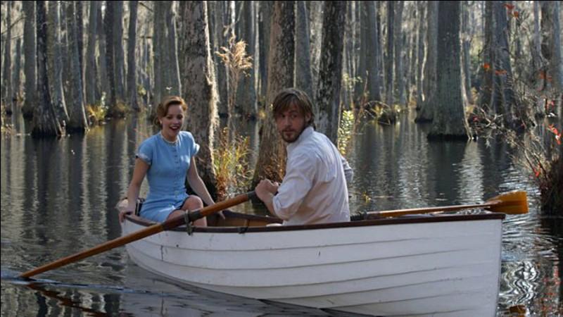 Noah Calhoun (Ryan Gosling) et Allie Hamilton (Rachel McAdams), qui dans les années trente, sont tombés amoureux l'un de l'autre, se rencontrent à nouveau bien des années plus tard. C'est...