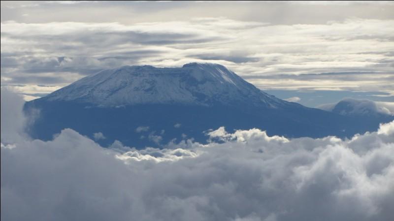 Pour Pascal Danel, elles te feront un blanc manteau les neiges du Kilimandjaro... dans quel pays ?