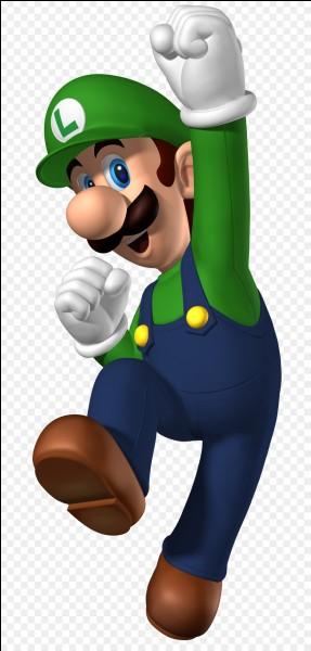 Dans quel jeu ne pouvons-nous pas apercevoir Luigi ?