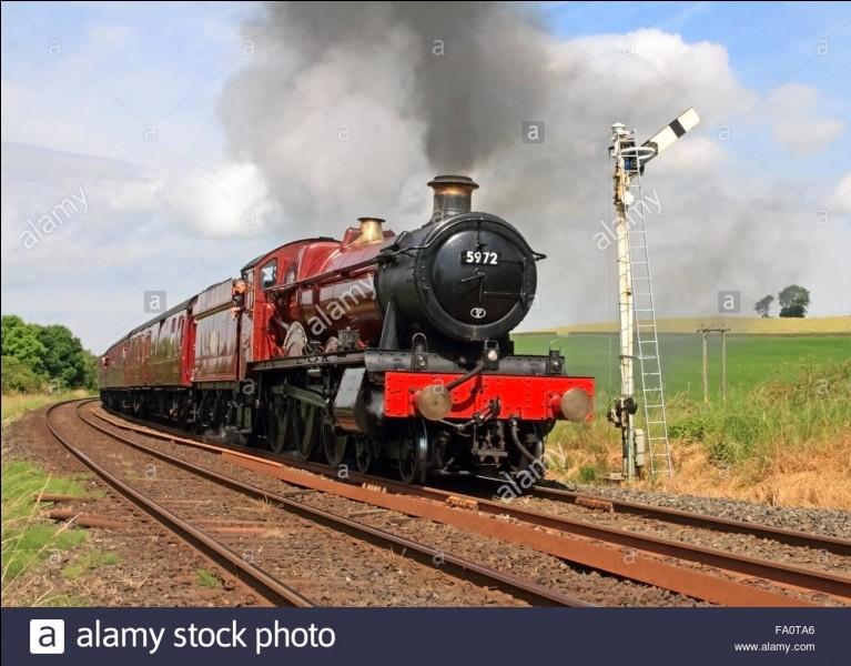 Tome 1 : dans le Poudlard express Hermione fait le voyage avec...