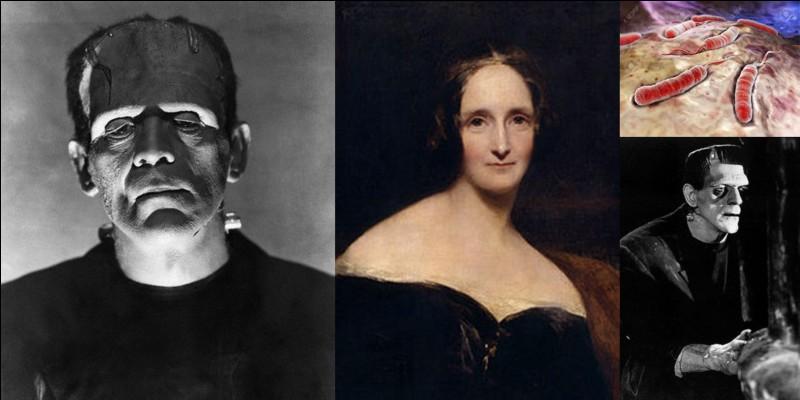 Littérature !Mary Shelley est connue pour avoir écrit le roman « Frankenstein ou le Prométhée moderne ». Elle avait 18 ans ! On pense que Marie Shelley aurait eu plusieurs sources d'inspiration comme la perte de son enfant, les effets de la Révolution française et du règne de Napoléon 1e… entre autres !A vous de trouver la mauvaise proposition, celle qui n'aurait pas inspiré Marie Shelley !