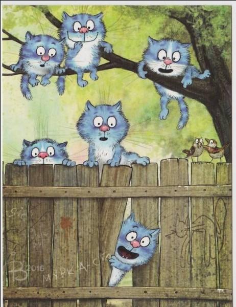 Le chat libre a un statut officiel reconnu par la loi du 6 janvier 1999, qui lui donne une protection juridique. Mais d'après vous, qu'est-ce qu'un chat libre ?