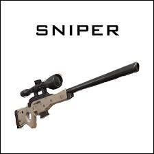 Question bonus : Parmi ces 5 fusils à sniper, lesquels sont toujours dans le jeu ?