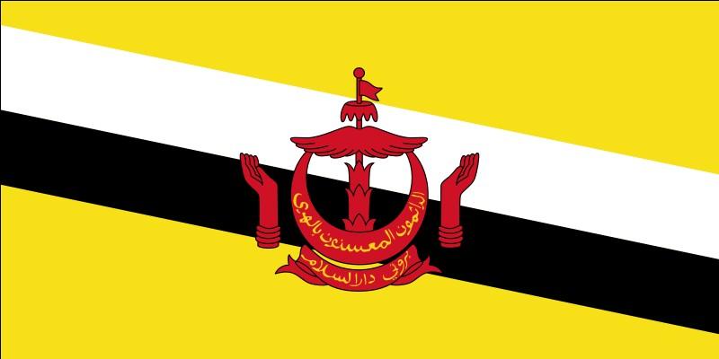 Citez une langue officielle du Brunei !