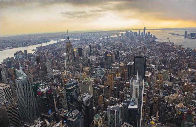 Nous traversons l'Atlantique et nous nous retrouvons dans une ville faisant partie du top 10 des mégapoles les plus peuplées du monde. Manhattan est le plus célèbre des cinq arrondissements de cette commune. Sa statue la plus célèbre a été offerte par le Français Gustave Eiffel, l'architecte de la tour Eiffel. C'est...