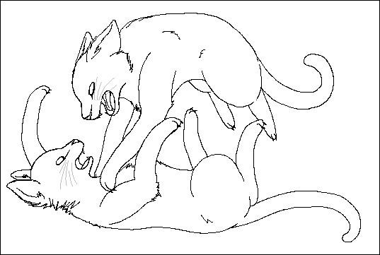 Contre quel chat ressent-elle une profonde rancœur ?