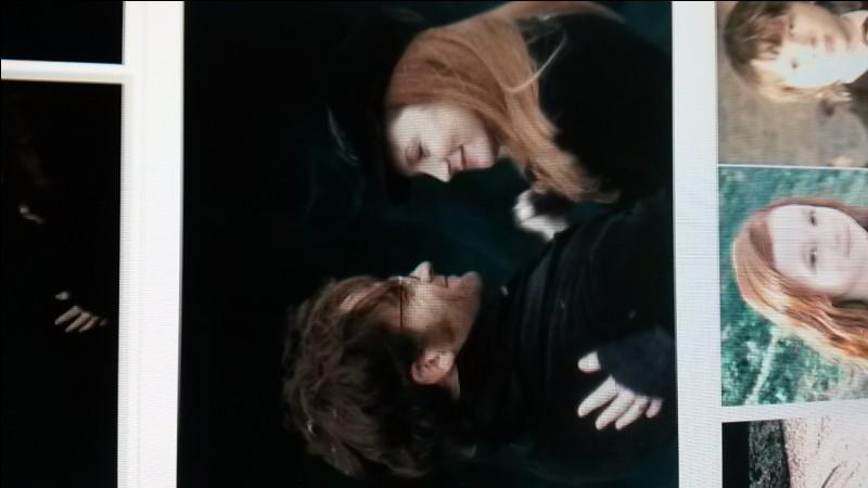 En quelle année sont morts Lily et James Potter ?