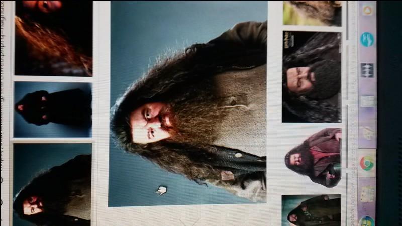 Dans le premier film, quand Hagrid vient chercher Harry pour Poudlard, combien de flammes lance-t-il avec son parapluie ?