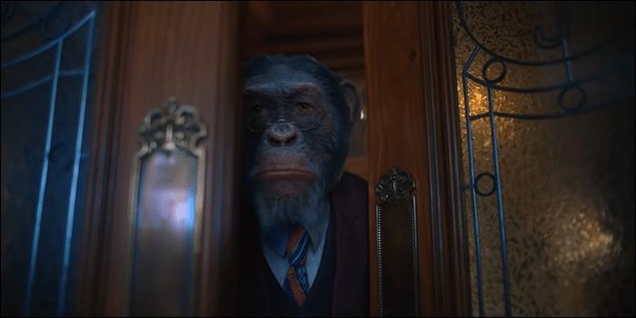 Comment s'appelle le chimpanzé capable de parler et doté d'une grande intelligence ?