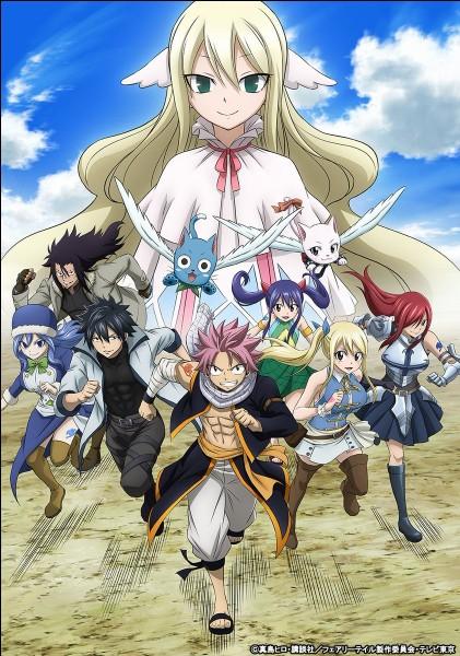 Ce manga est basé sur une guilde de mage dont les symboles principaux sont l'amitié, le respect et la bonne humeur :
