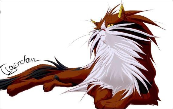 Qui est l'apprenti de Griffe de Tigre ?