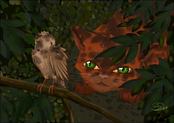 Sur quel chat Rusty tombe-t-il lors d'une partie de chasse ?
