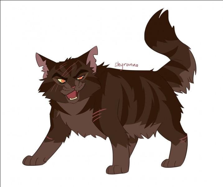 Quel chat reprend le pouvoir à Étoile Brisée ?