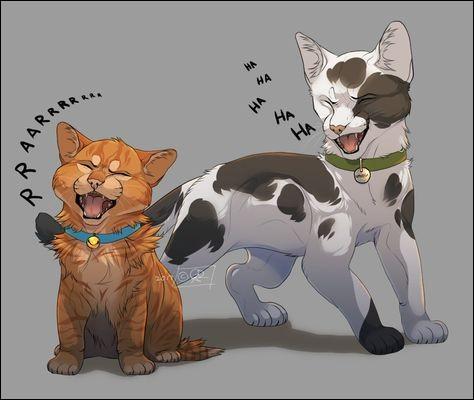 Comment se nomme le chat domestique avec qui Rusty est ami ?