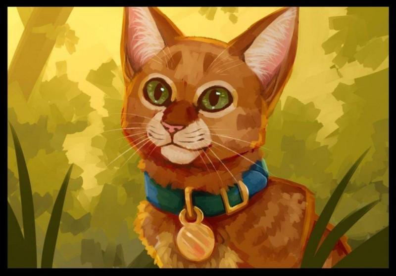 Quel chat Rusty rencontre-t-il dans la forêt ?